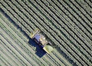 Drone Filming BBC Barfoot Farm