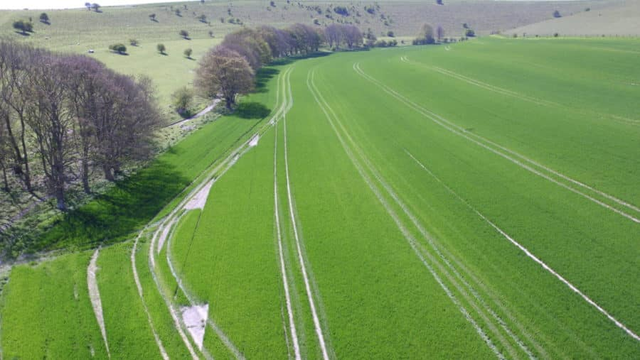 Drones and Precision Agriculture