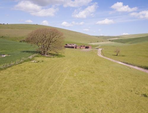Local Land Survey